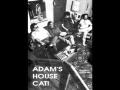 Adamshousecat