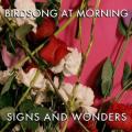 Birdsongsignsandwonders